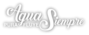 apfs_logotipo